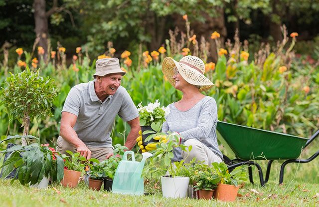 Tips on Choosing The Right Gardening Hat